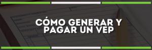 Cómo pagar un VEP | Generarlo + Pagarlo