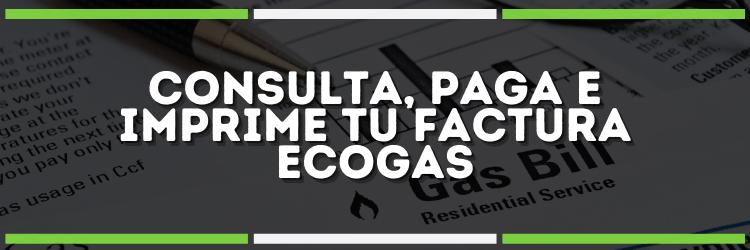 Ecogas Factura | Consultar + Pagar + Imprimir