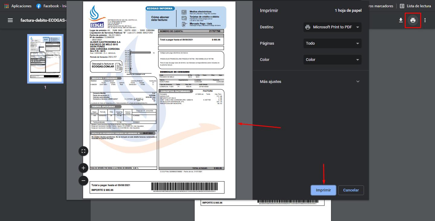 Cómo imprimir la factura de ecogas
